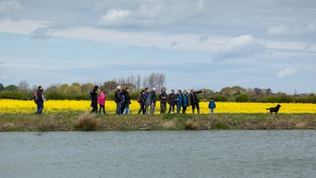 Ouse Washes Nature Friendly Zone. Pictured: OWNFZ farm walk. Pete Johnstone