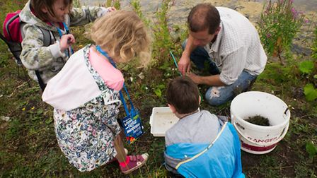 Ouse Washes Nature Friendly Zone. Pictured: Pictured: Family Farm Walk, pond dipping