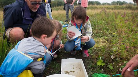 Ouse Washes Nature Friendly Zone. Pictured: Family Farm Walk, pond dipping