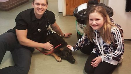 A community has rallied round to help pay vet fees for a young female alsatian that was hit by a car