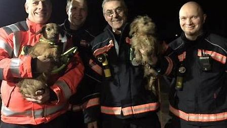 Christmas came early for a dog owner in Little Downham on Christmas Eve after a crew from Littleport