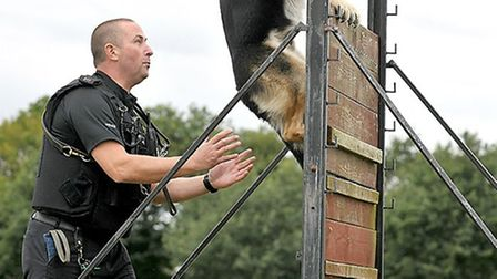 Kane in action with his handler PC Graham Ashby