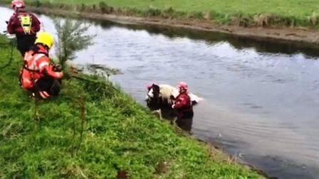 Horse is rescued from the river at Mepal.