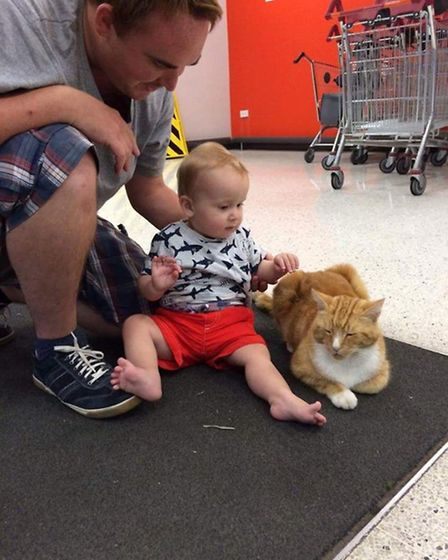 A family getting to know Garfield