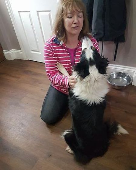 Couple travel from Devon to collect Misty from Ravenswood Pet Rescue