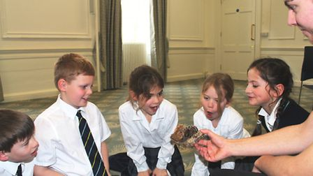 Tropical creatures pay King's Ely Junior pupils a visit. PHOTO: King's Ely.
