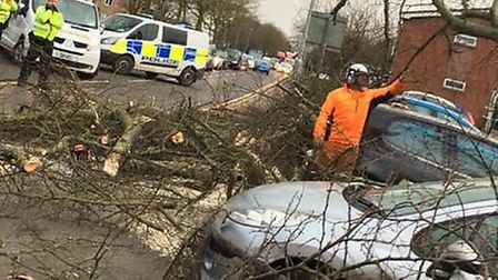 The ISS Arboriculture team helping police officers clear fallen trees as #StormDoris hit Wisbech yes