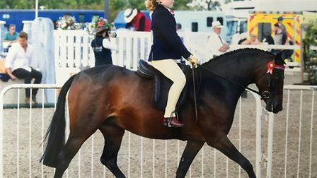 Flora Hayes, who was victorious at the British Show Pony Society's Suffolk Area Points Party. PHOTO: