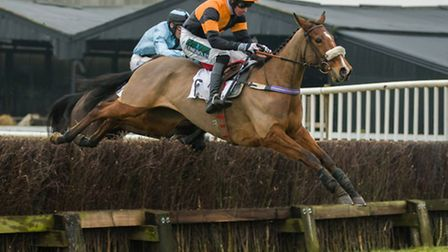 Richard Collinson, on Muchadoaboutnothing, triumphed in bizarre style in the Young Horse Maiden race