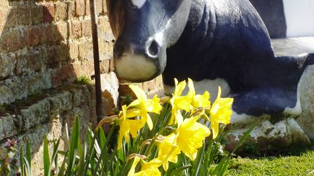 Farmland Museum to host range of activities for families over Easter school holidays
