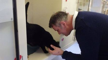 Megan the cat found a neew forever home during the RSPCA's have a heart Valentine's weekend PHOTO: R