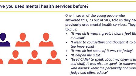 Cambridgeshire Healthwatch have published a report on young people's mental health in the county inc