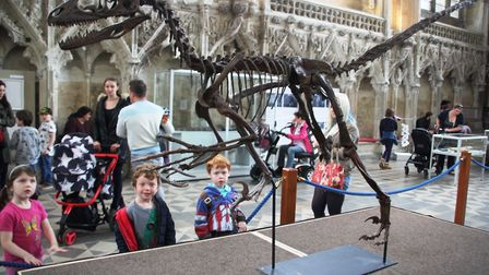 Dinosaur dig with life size T-Rex helps launch Ely Cathedral Science Festival. PHOTO: Mike Rouse.