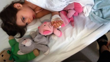 Skyla Boldan was attacked by a Jack Rusell terrier in Estover Road, March.