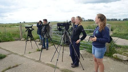 Project Godwit has seen 25 rare black-tailed Godwits hand reared and then released into the Cambridg