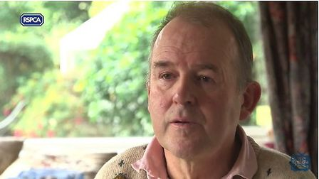 Jonathan Theobald appears in an RSPCA video to urge people not to leave dogs in hot cars, his trhee