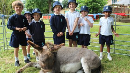 Ark Farm, a local educational mobile farm experience, visited King's Ely Acremont and Nursery last w