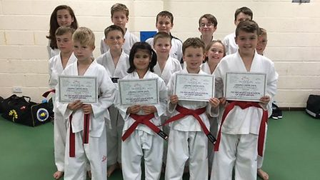 The Stage 3 Juniors at the Ely Mark Farnham School of Tae Kwon-Do.