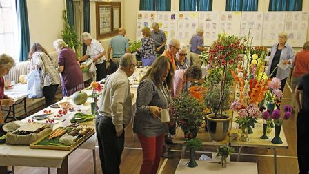 Many visitors flocked to see tje displays at the Bardfield Horticultural Society Show. Picture: DOUG