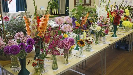 Some of the colourful flowers on offer at the show. Picture: DOUG JOYCE