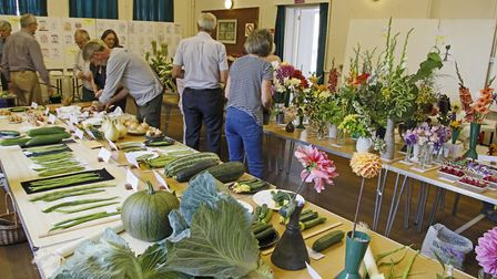 Visitors take a look at some of the displays at the Bardfield Horticultural Society Show. Picture: D