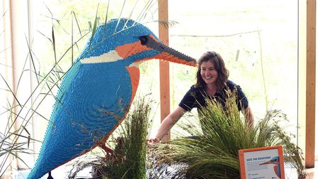 Hetty Grant with one of the giant Lego kingfishers at the Welney Wetland Centre's Giant Lego Brick a
