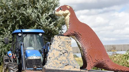 The giant Lego animals were brought in via forklift ready for the beginning of the trail on August 5