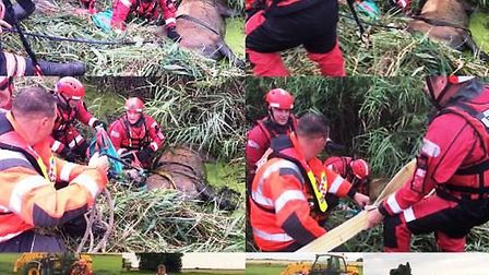 Horse stuck in water filled ditch in Cock Bank, Whittlesey is rescued by Cambs Fire crews. PHOTO Cam