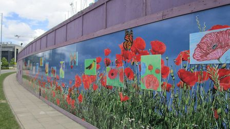 Swaffham Bulbeck charity Red2Green wins national competition - thanks to colourful poppy field print