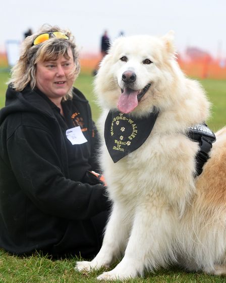 Fenland Firestorm Dog Show. Sharon Wing with Blade