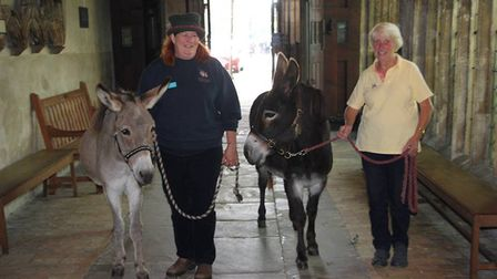 Pet service at Ely Cathedral PHOTOS Mike Rouse