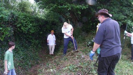 Littleport Lions dig in at Peacock's Meadow
