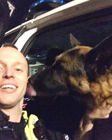 Magner the alsatian rescued by police officer in Fordham after sneaking out of concerned owner's hom