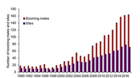 Booming male bitterns and sites graph.
