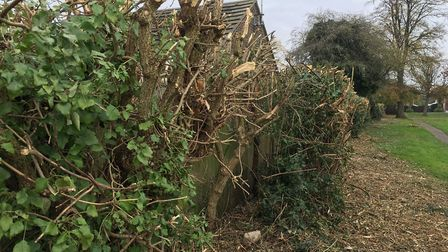 Residents in March are not happy about the state of a number of hedges and paths in March after coun