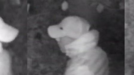 CCTV appeal after arson attack at Sion Park, Stansted Mountfitchet. Picture: ESSEX POLICE