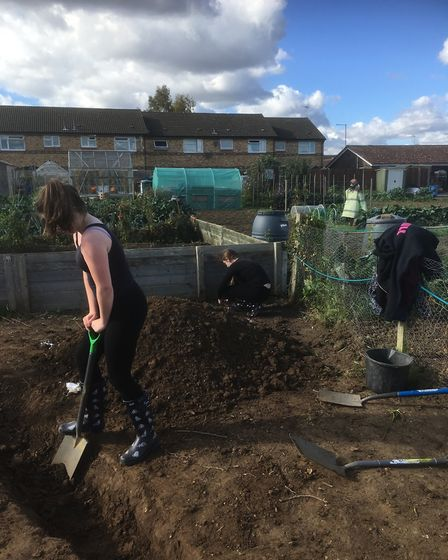 Sir Harry Smith students help conservation charity build communal wildlife area at Whittlesey allotm