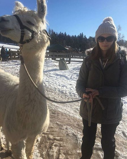 An Ely College student trekking with a llama
