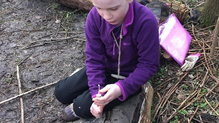 The community are rallying round a forest school at Ring's End Nature Reserve in March which was van