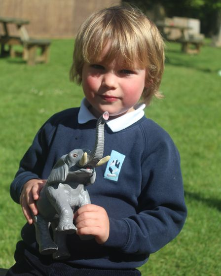 A baby elephant called Mapia has been 'adopted' by children and staff at King's Ely Acremont Nursery