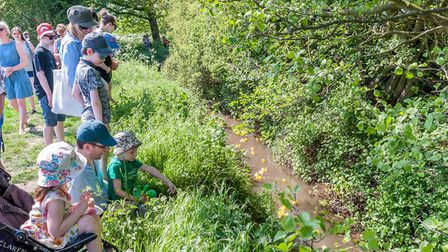 The annual Rayne Duck Race took in Pod's Brook. Picture: SAFFRON PHOTO