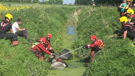 Horse trapped in ditch was resuced by fire crews. Picture: Cambs Fire