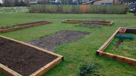 Compost at Dunmow St Mary's Primary School is made from raw kitchen waste. Picture: CONTRIBUTED.