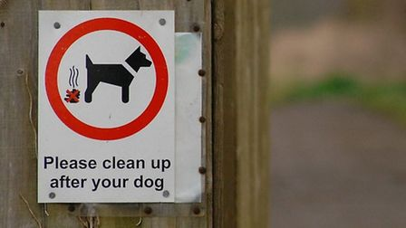 Enforcement action against dog owners who don't pick up after their pets