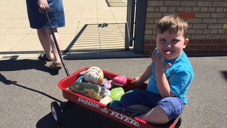 More than 1,000 hand-painted eel rocks will be on display at an Ely school fete on Saturday (July 7)