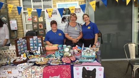 Staff and volunteers raise more than £300 for Cats Protection at a fundraising event. Picture: Submi