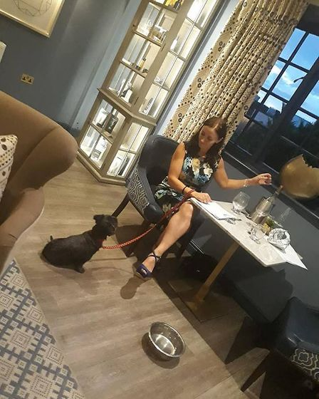 Enjoying an evening meal with Pepper in the piano room at Tewksebury Park hotel. PHOTO: Daisy Brownl