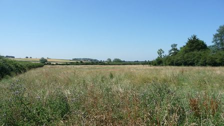 Land in Haddenham up for sale at the Cheffins auction.