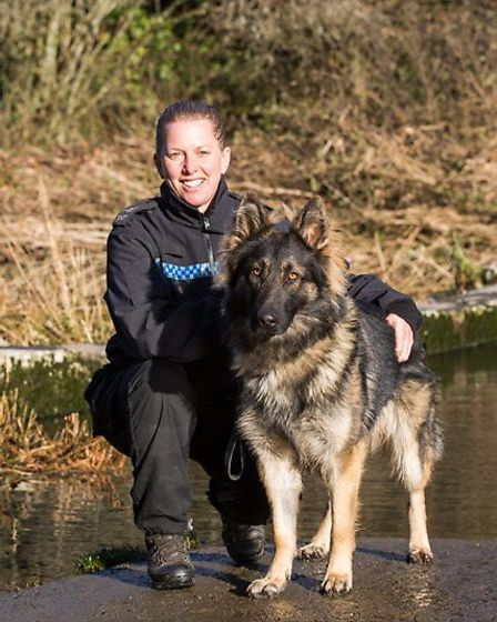 This is Harley with his handler PC Lindsey Cox, one of the dogs to star in the BCH Dog Unit charity