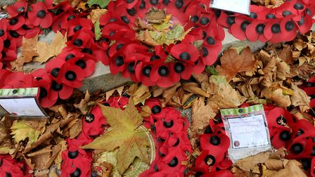 A special event will be held in Soham to mark 100 years since the end of the Great War. Picture: PA